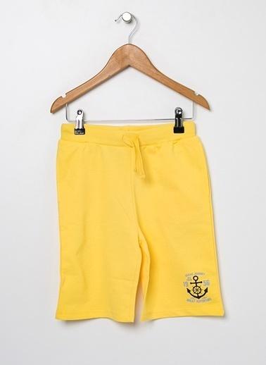 Limon Company Şort Sarı